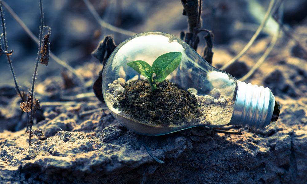 Comment devenir un comptable environnemental